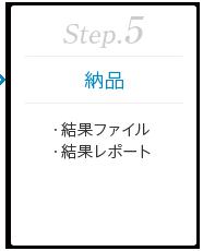Step.5 [納品] ・結果ファイル ・結果レポート